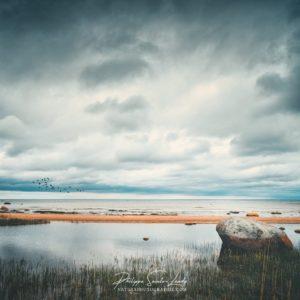 Paysage d'orage en bordure de mer - Golfe de Finlande