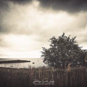 Photo de paysage en bordure de la mer baltique