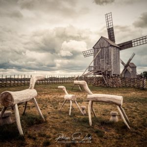 L'esprit de Don Quichote dans les moulins d'Angla