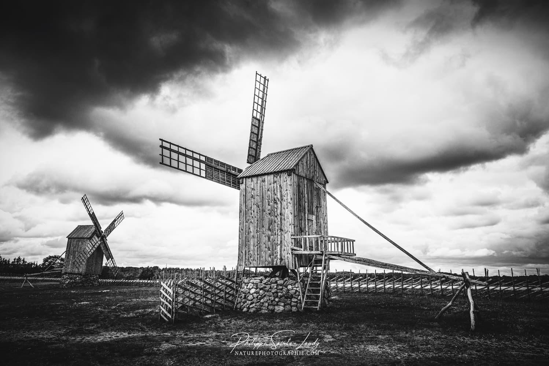 Photos noir et blanc. La galerie photo de Nature Photographie