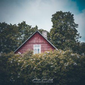 Une maison Estonienne cachée dans les lilas