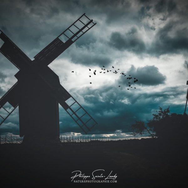 Moulins à vent en contre-jour