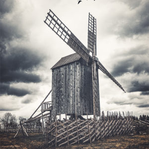 Des oiseaux volent au-dessus d'un ancien moulin à vent à Angla - Estonie