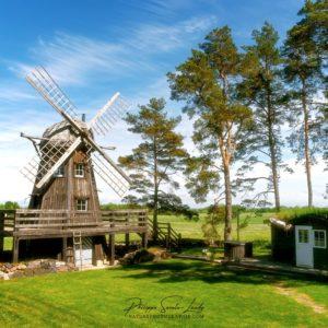 Un moulin à vent dans la campagne verte d'Estonie