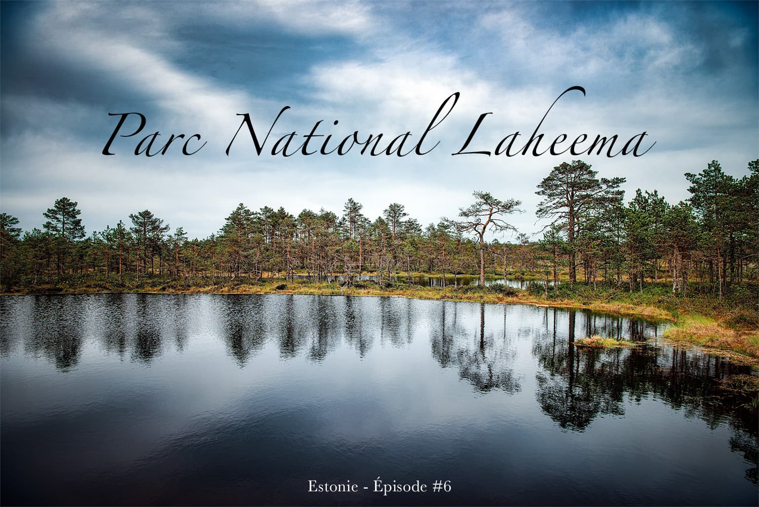 Le parc national de Laheema en Estonie