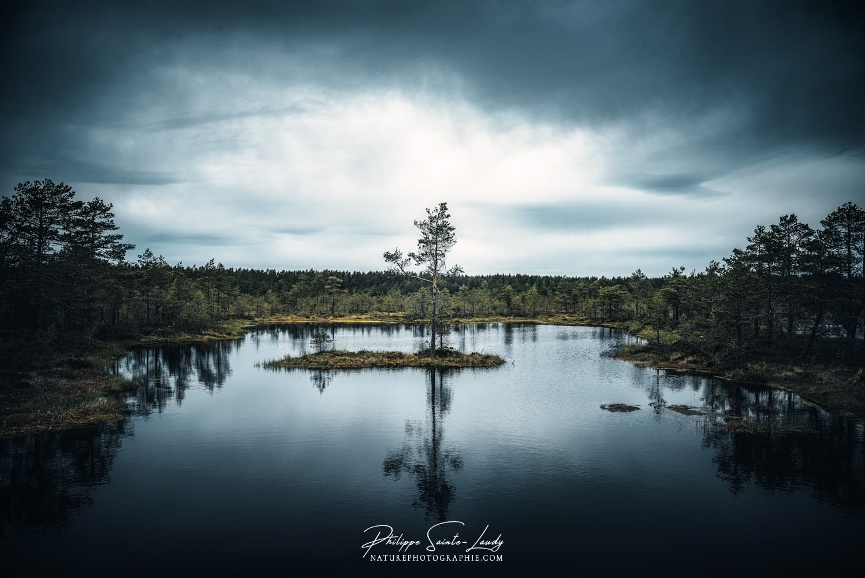 Photo de paysage dans le parc de Laheema en Estonie