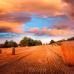Coucher de soleil dramatique au-dessus des champs