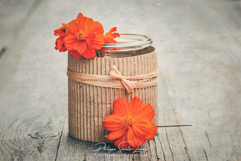 Photo de fleurs avec une texture