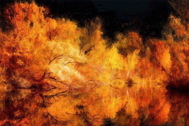 Paintographie d'automne