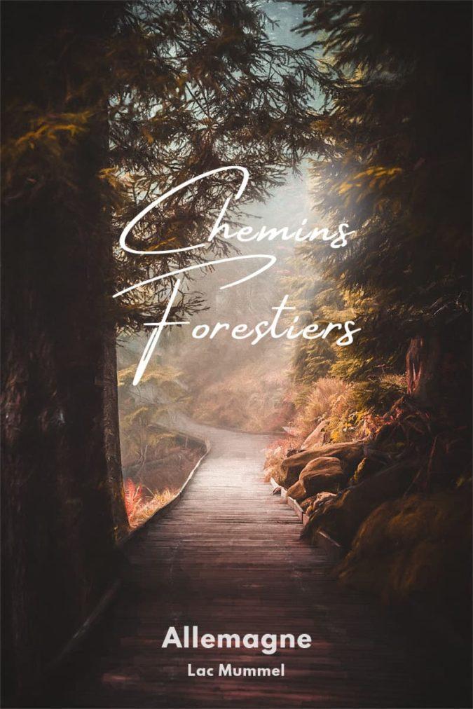 Photos de sentiers forestiers autour du Mummelsee en Forêt Noire