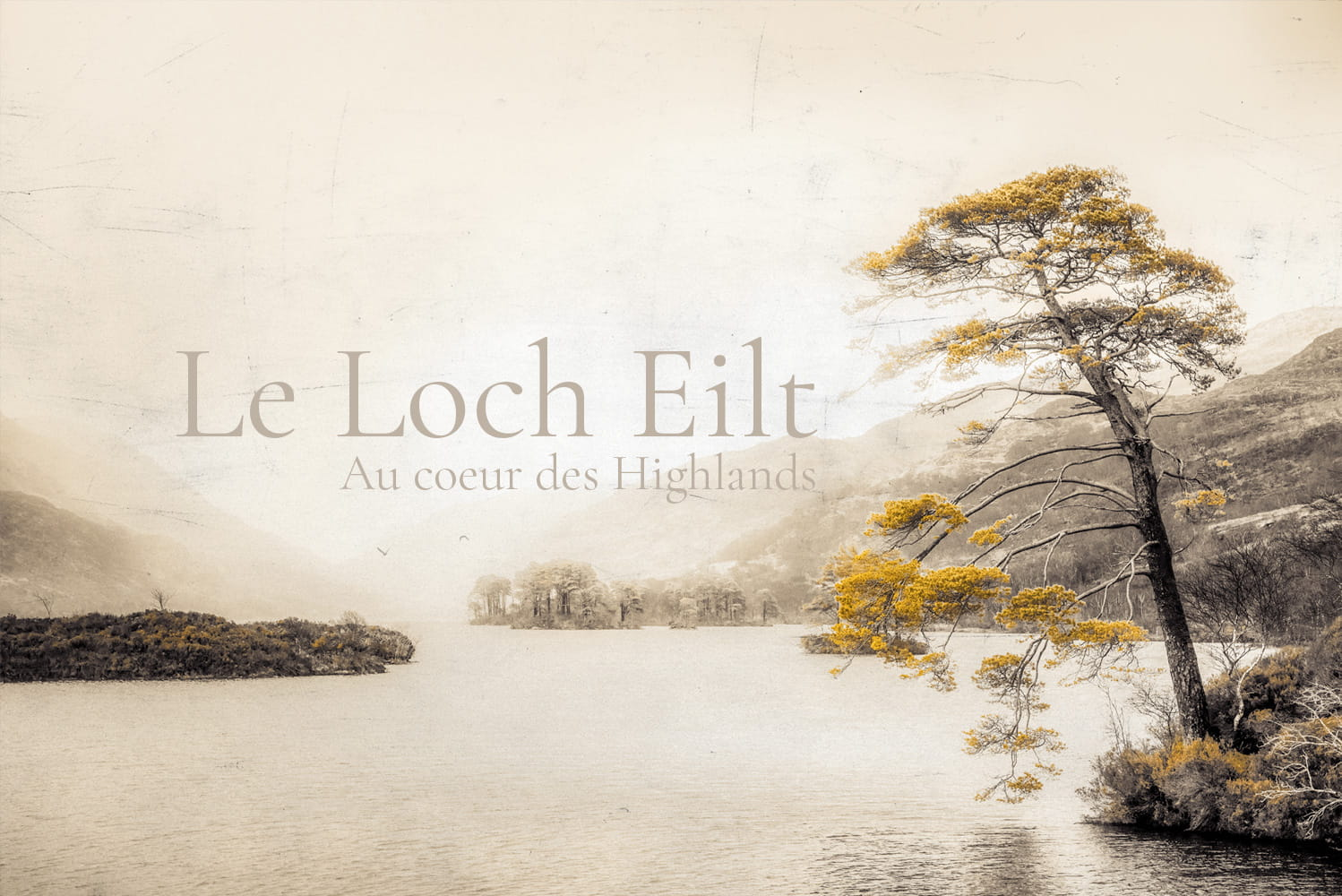 Article et photos sur le Loch Eilt