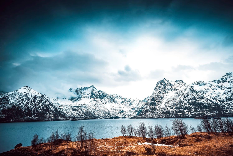 Fjord enneigé sur les îles Lofoten