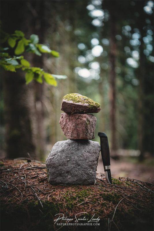 Couteau Marttiini en forêt