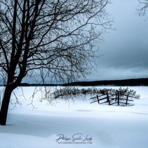 Paysage enneigé en Laponie