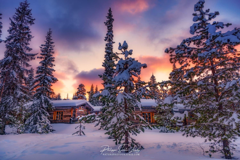 Les Plus Belles Photos De Nature Photographie