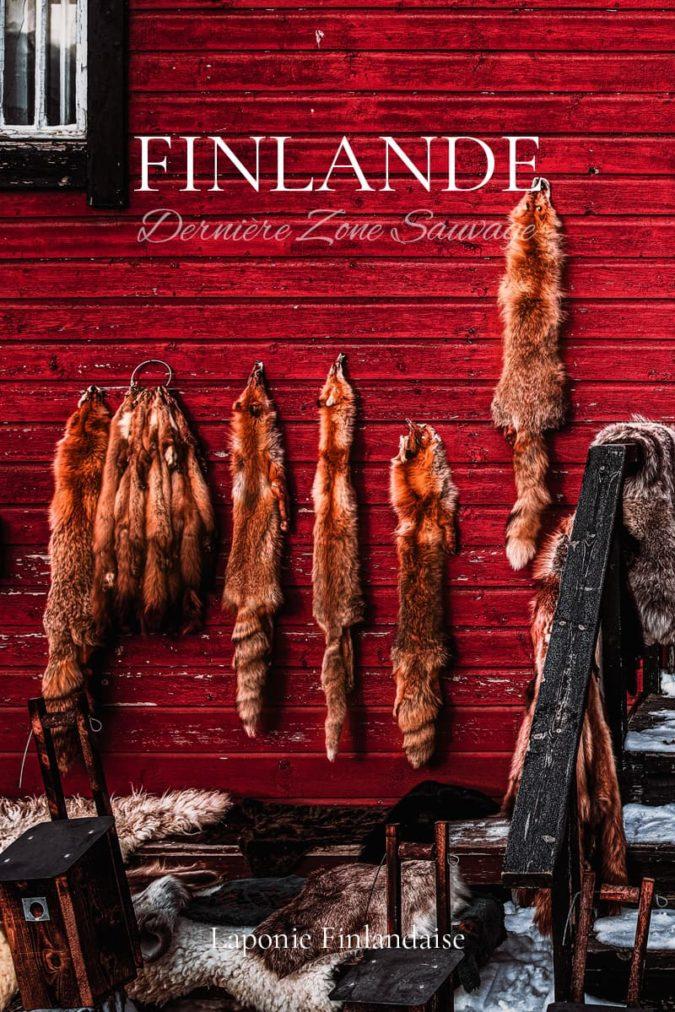 Finlande Sauvage