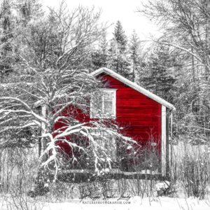Chalet rouge en forêt