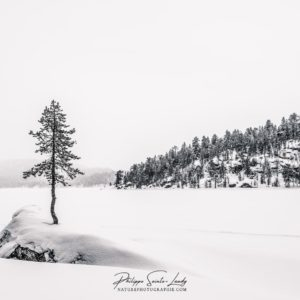 Lac gelé en Laponie