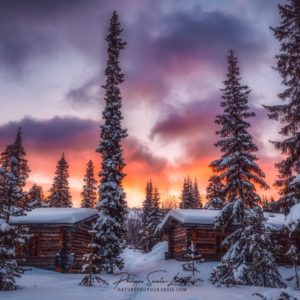 Coucher de soleil et paysage de neige - Laponie