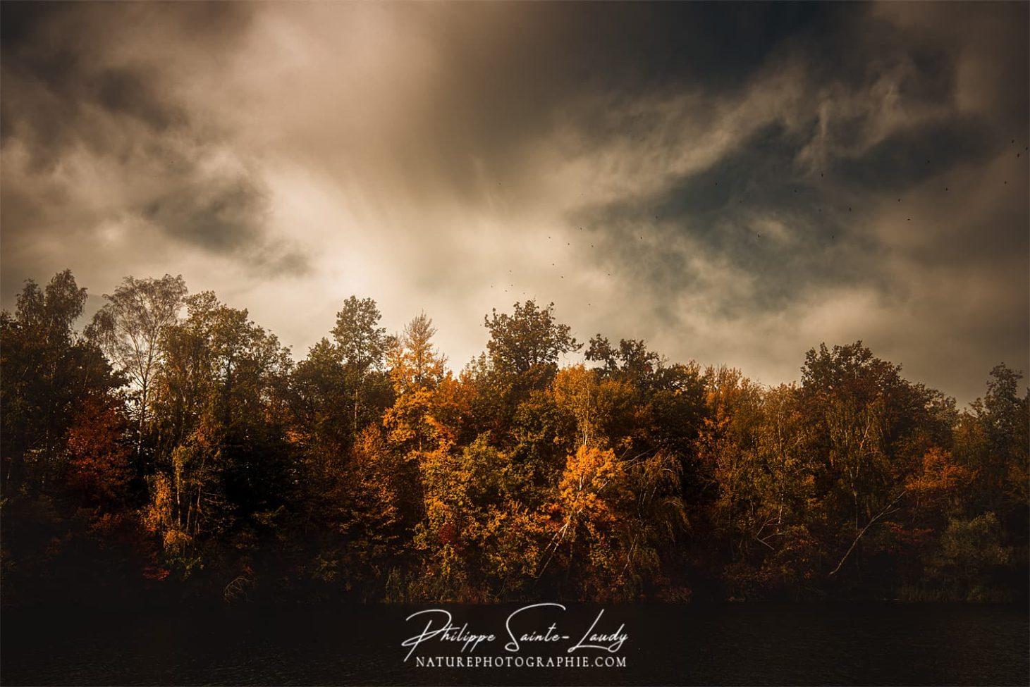 Photo dramatique en automne