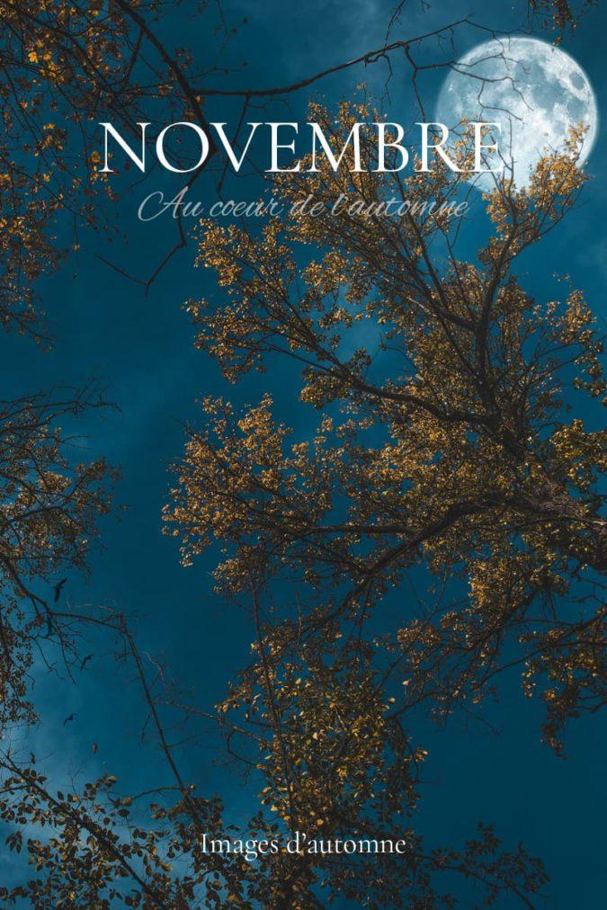 Automne en novembre. Article et photos sur Nature Photographie