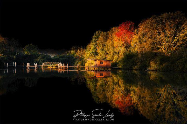 Ciel noir et nature en automne