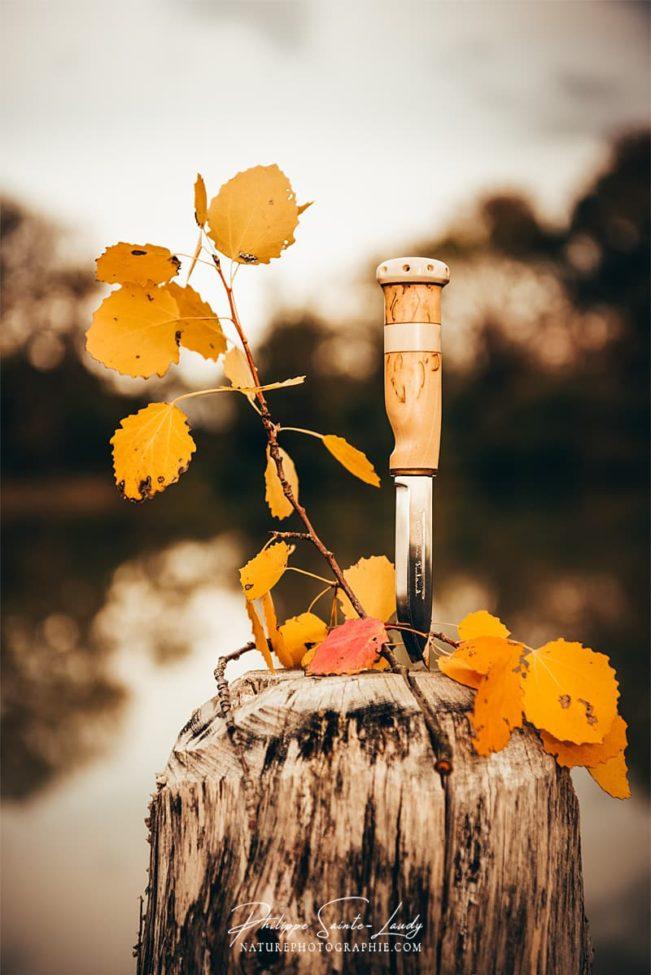 Couteau Marttiini en automne