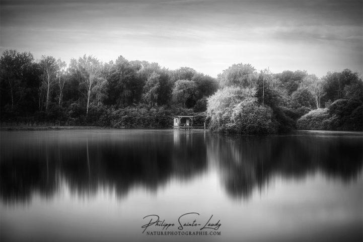 Paysage en noir et blanc d'un lac en automne