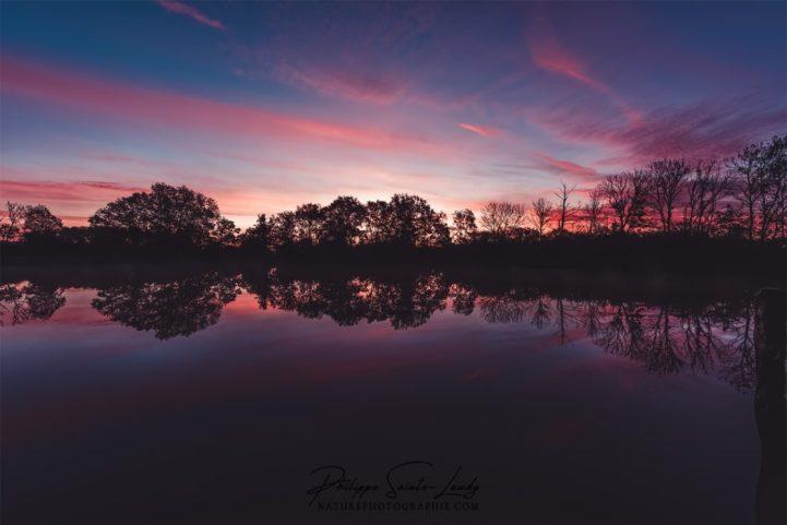 Coucher de soleil sur un étang en Lorraine