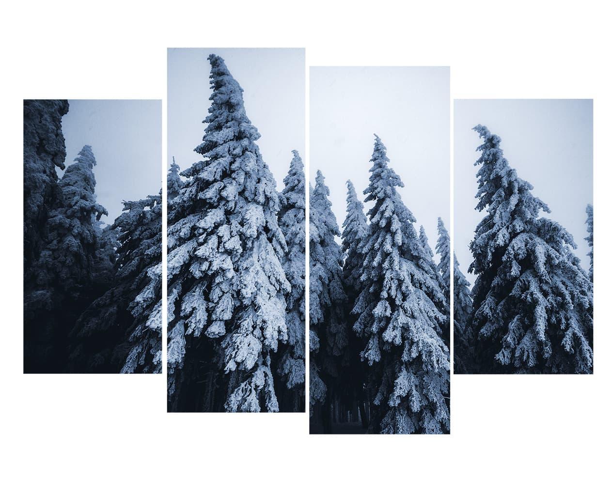 Sapnis recouverts de neige