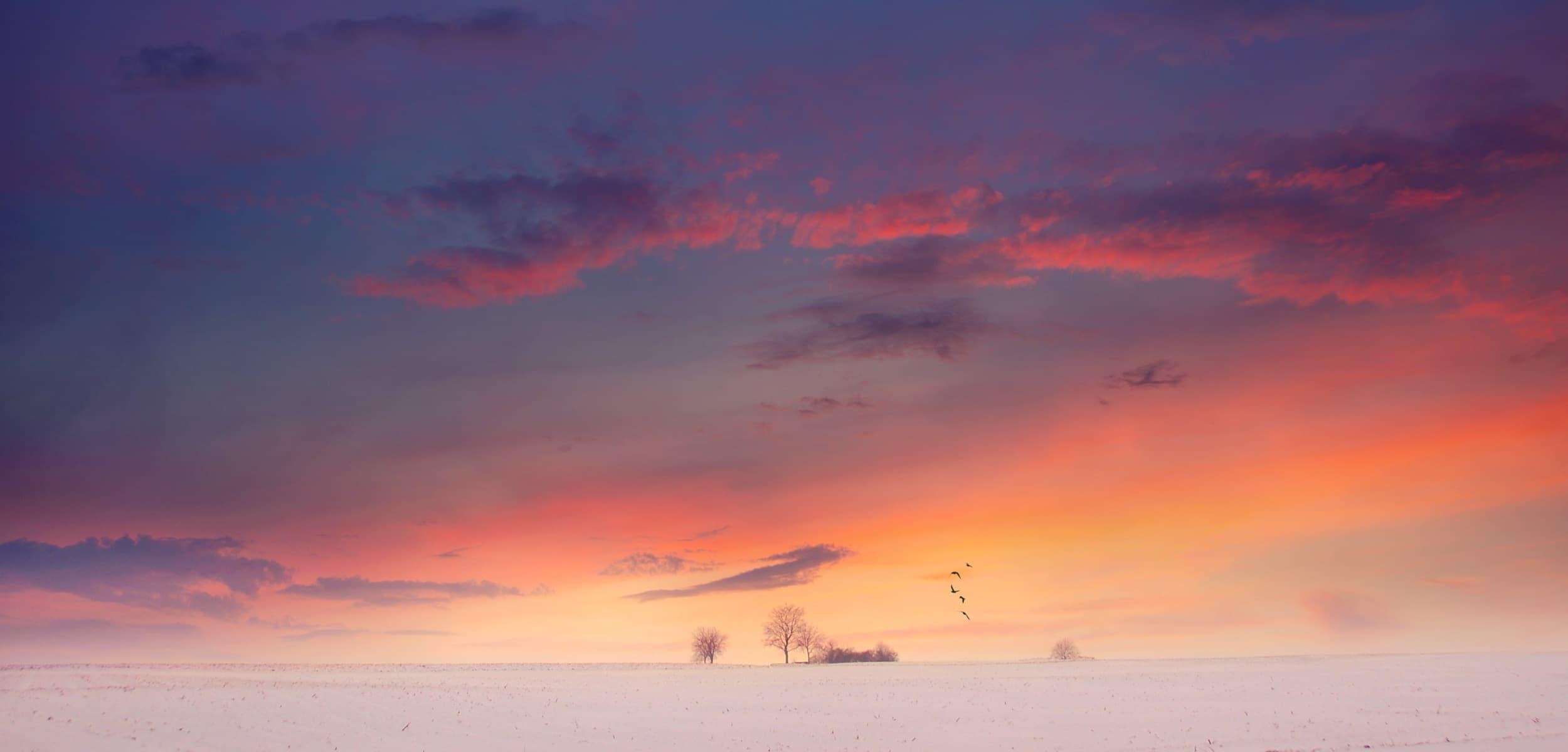 Photos des couleurs de 'hiver