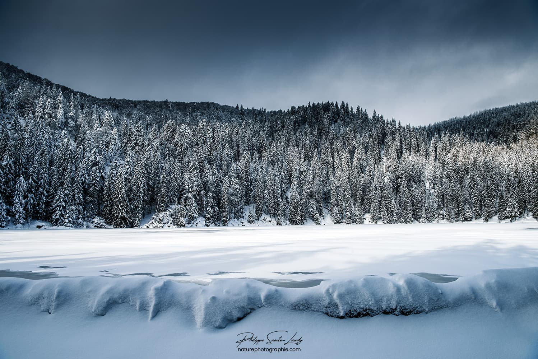 Lac gelé et forêt de sapins dans les Vosges
