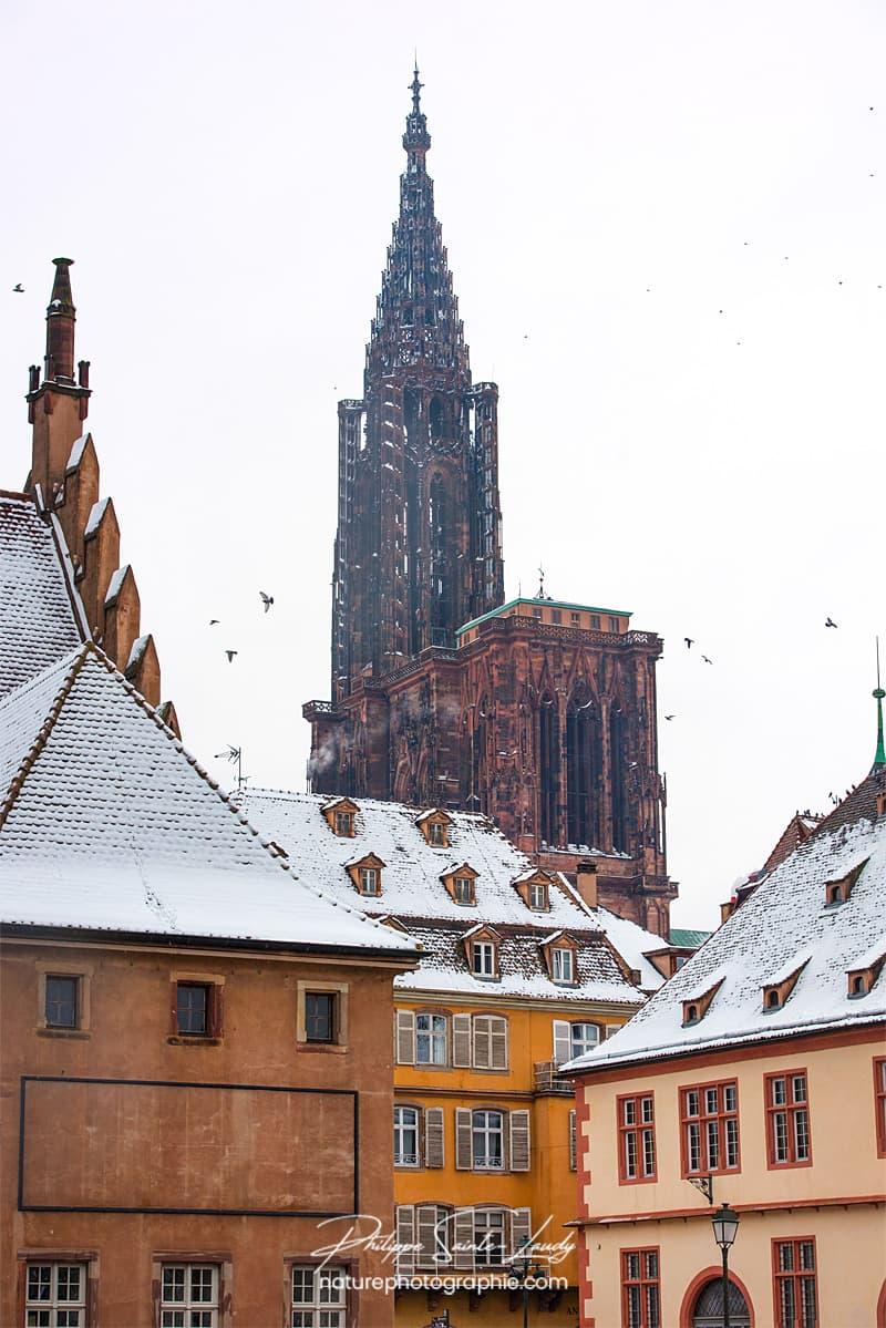 Vue sur la Cathédrale de Strasbourg