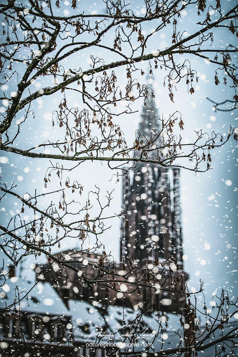Cathédrale de Strasbourg sous la neige