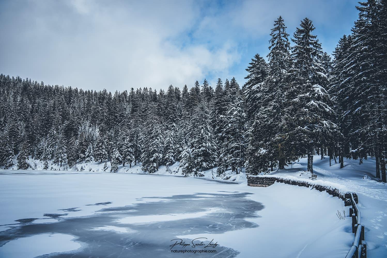 Lac enneigé dans les Vosges