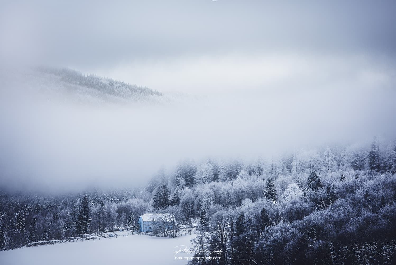 Brouillard en montagne