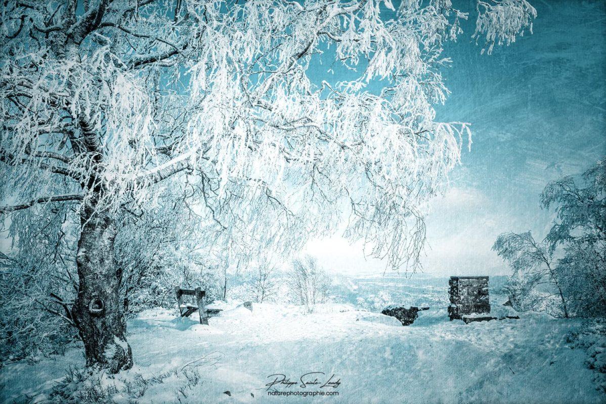 Photo d'hiver texturée