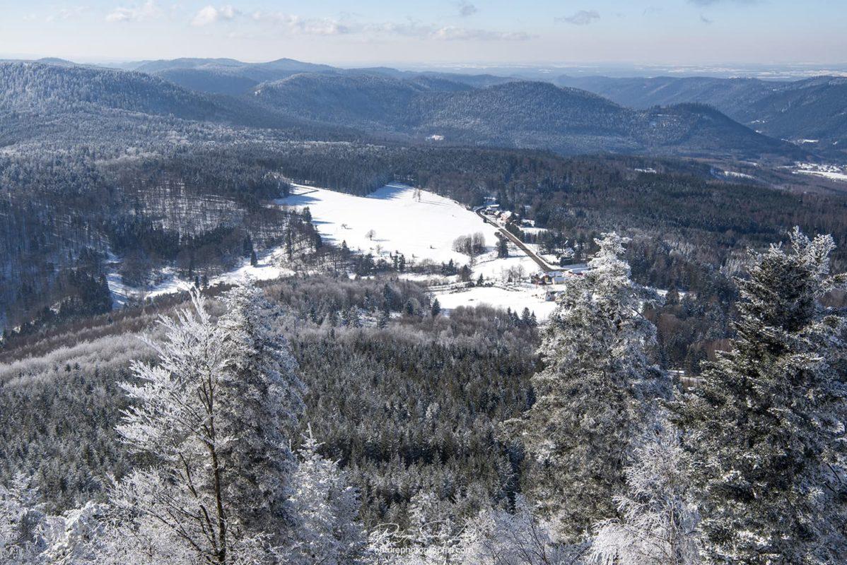 Vue panoramique au sommet du Donon