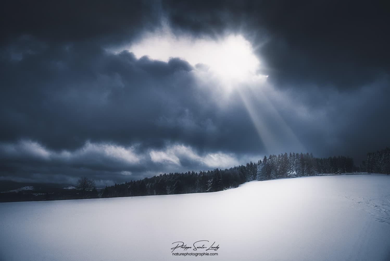 Rayons de lumière sur une forêt de sapins en hiver