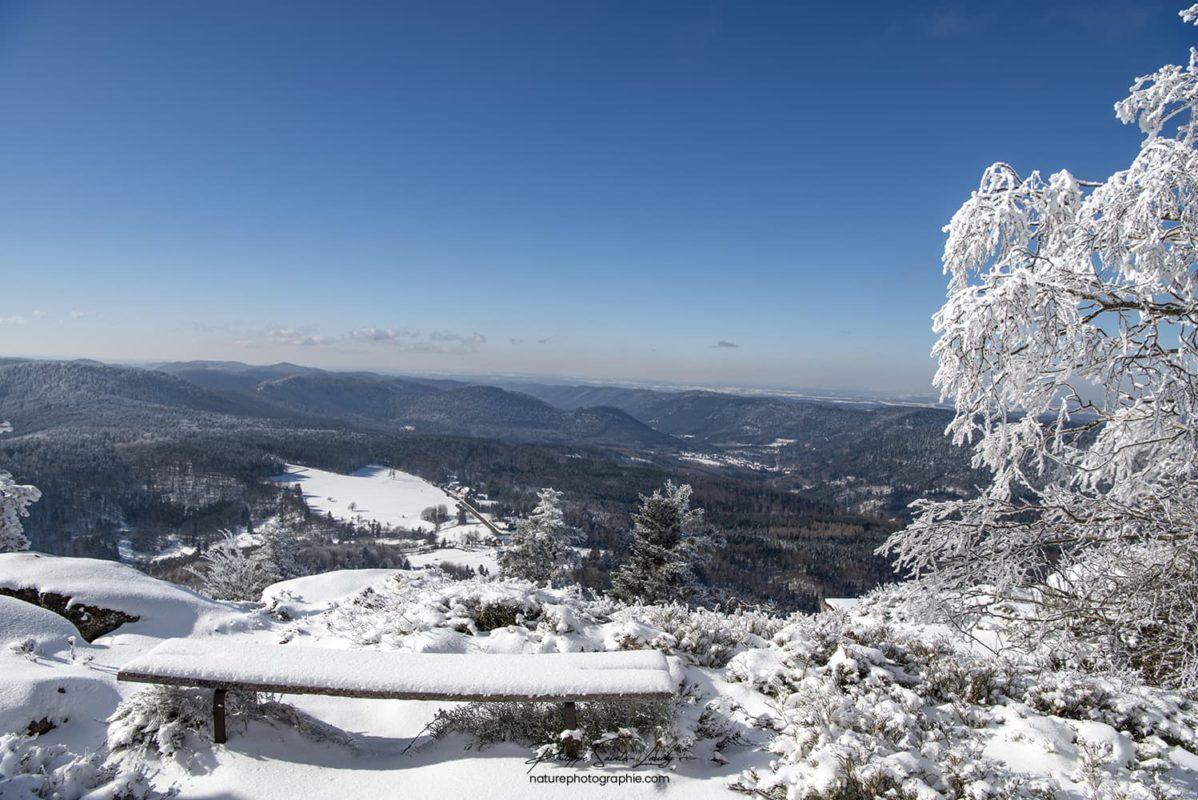 Vue sur les sommets Vosgiens depuis le col du Donon