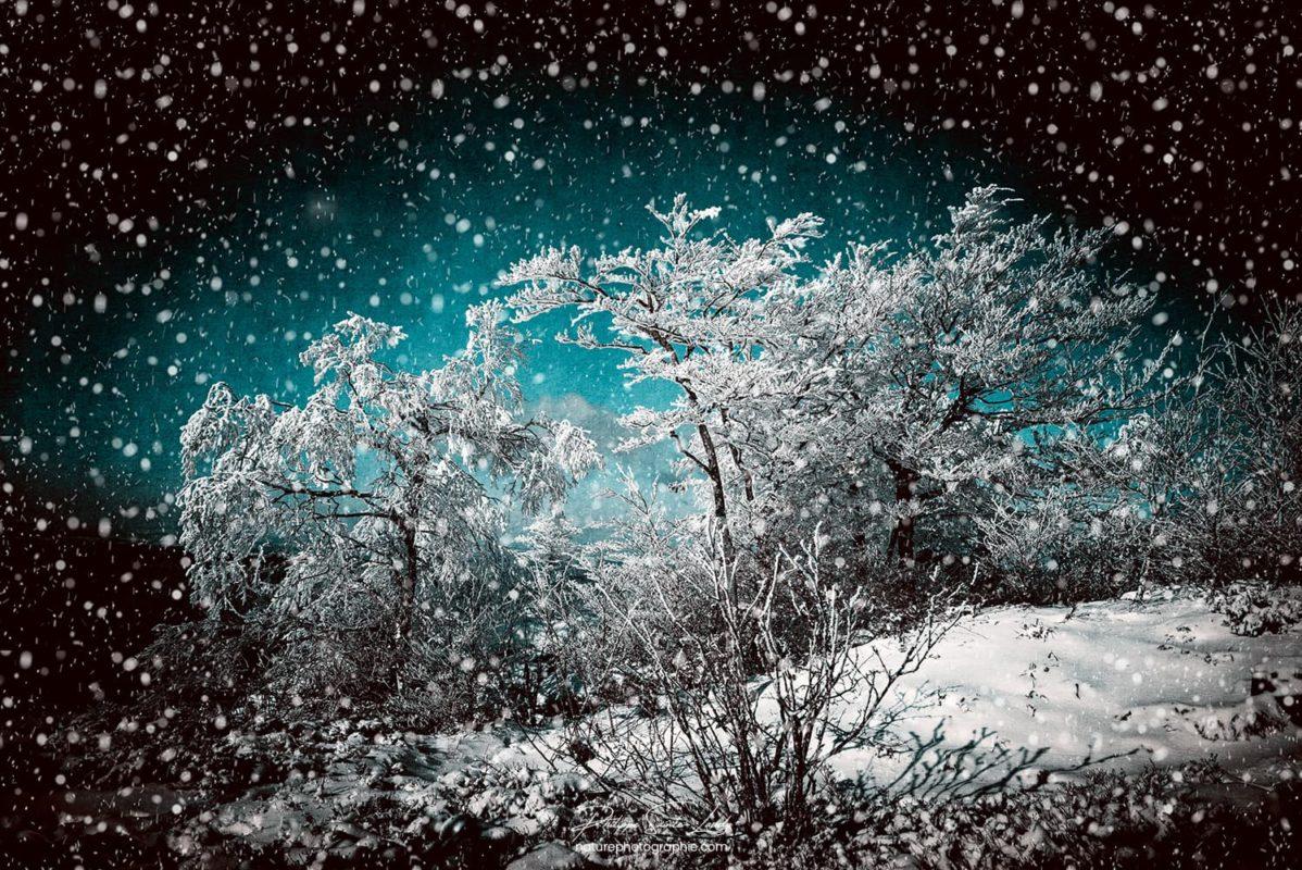 Texture photo et neige