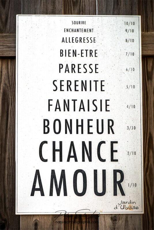 Amour Chance Bonheur