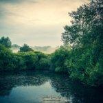 Reflet de la campagne Mosellane